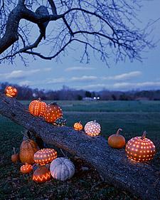 pumpkin round-up