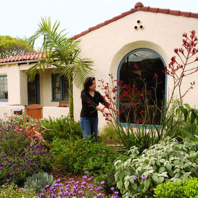 Savvy Housekeeping Attractive Lawn less Front Yards