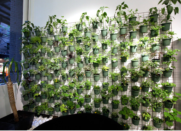 Savvy housekeeping vertical garden in pot form for Balcony vertical garden