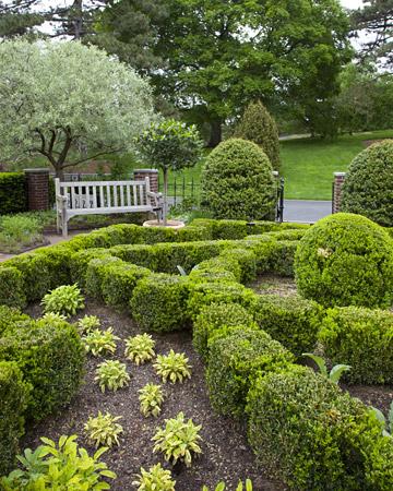 Savvy Housekeeping » Martha Stewart's Herb Garden