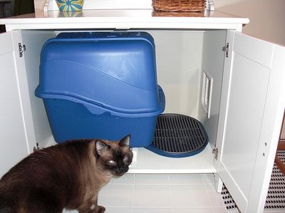 Savvy housekeeping ikea cabinet to hide the cat box for Ikea litter box