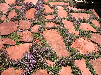 Savvyhousekeeping Types Of Flagstone Patios How To Lay