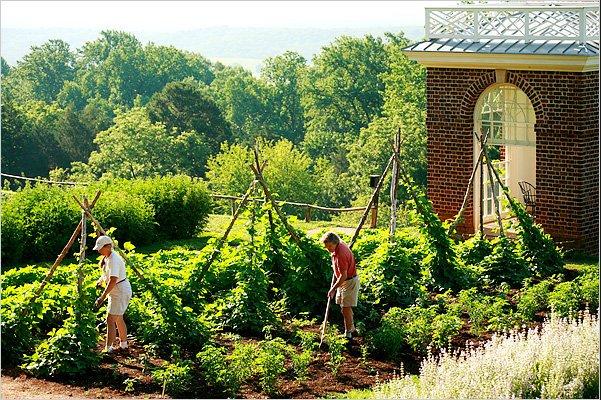 Savvyhousekeeping Thomas Jefferson Garden Methods Monticello