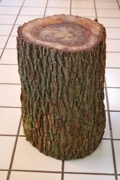 Savvy Housekeeping From Tree Stump To Side Table
