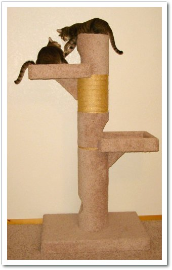Savvy housekeeping make your own cat scratcher for How to make a cat tower