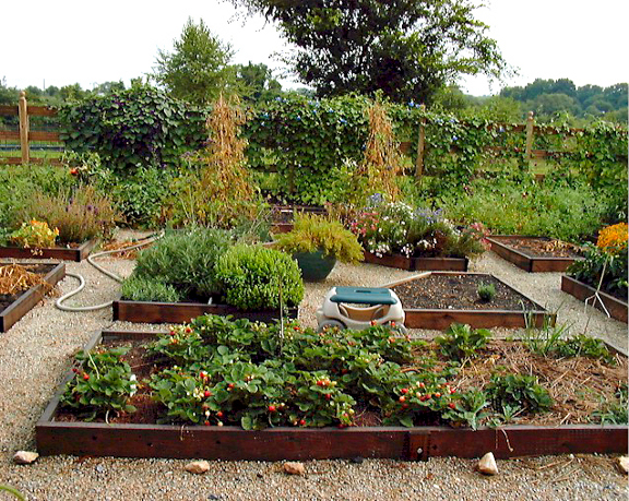 Savvy Housekeeping Raised Bed Inspiration