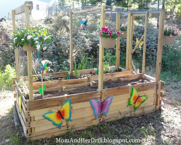 childrens_vegetable_garden_critterproof